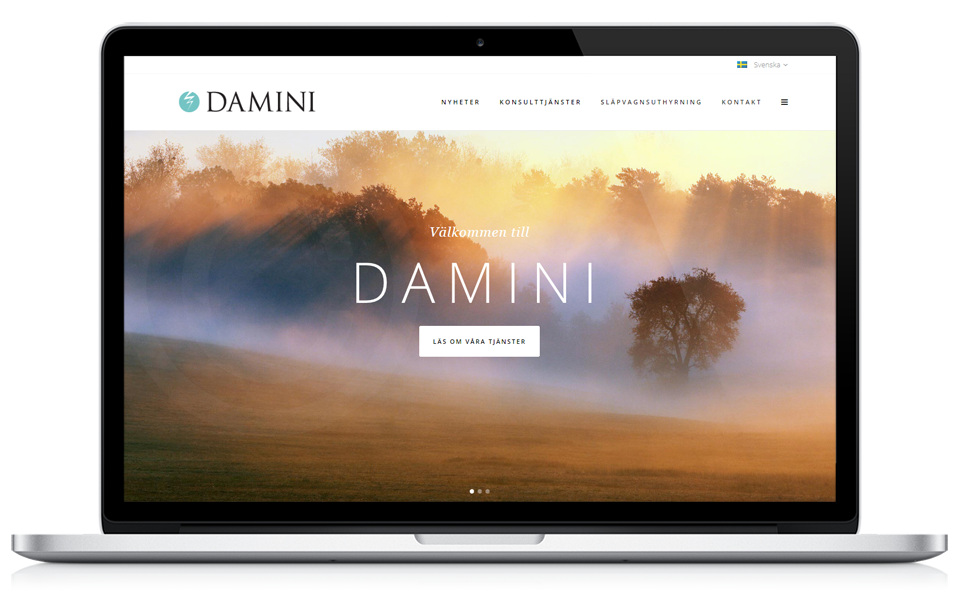 portfolio_laptop_featimg_damini